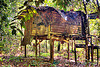 jungle hut, abandoned, cabin, corrugated, decay, decaying, gunung mulu national park, house, hut, indigenous, jungle, metal panels, rain forest, ruins, rusted, rusty, stilts, wooden