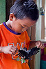 kid playing with baby bird, baby bird, boy, child, kid, madai caves, playing, swiftlet, wings