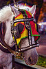 horse with bridle mask and blinders, bridle, draft horse, draught horse, horse hood, horse mask, java, jogja, jogjakarta, malioboro, night, street, white horse, yogyakarta