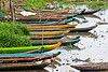 traditional indonesian canoes in tidal marsh