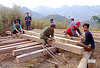 carpenters building a house - vietnam, carpenters, carpentry, construction workers, home builders, house, men, tools, wood beams, working